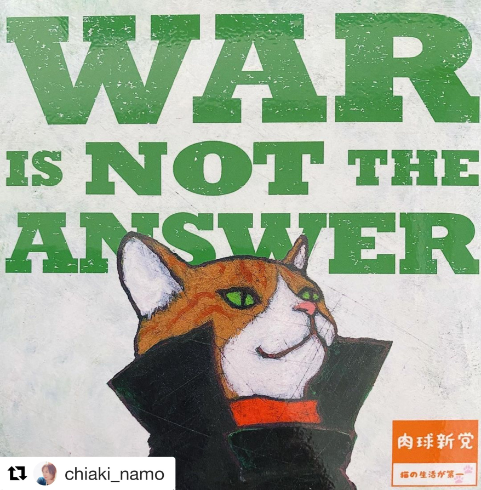 NO WAR CAT