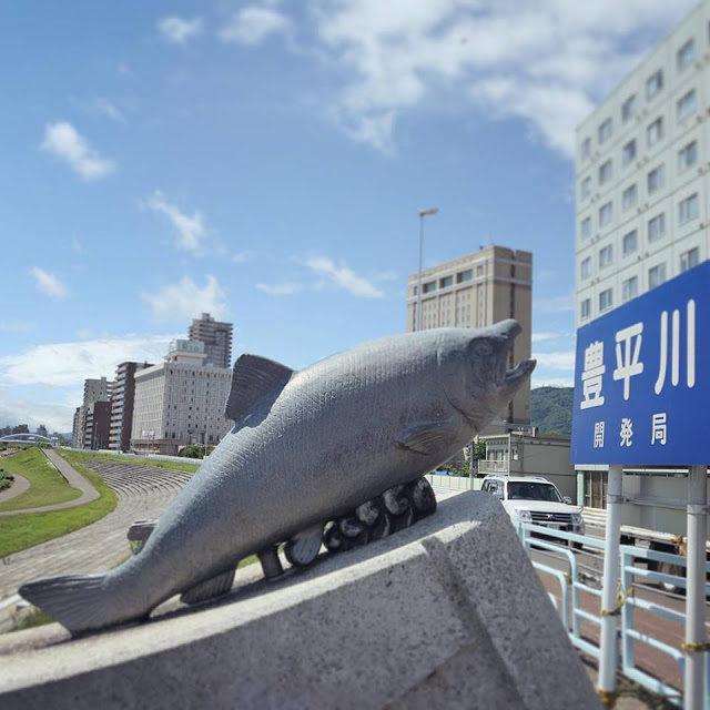 豊平川の鮭