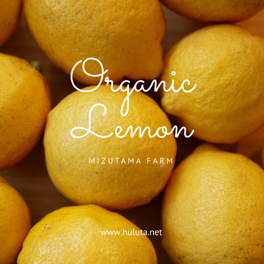 無農薬レモン